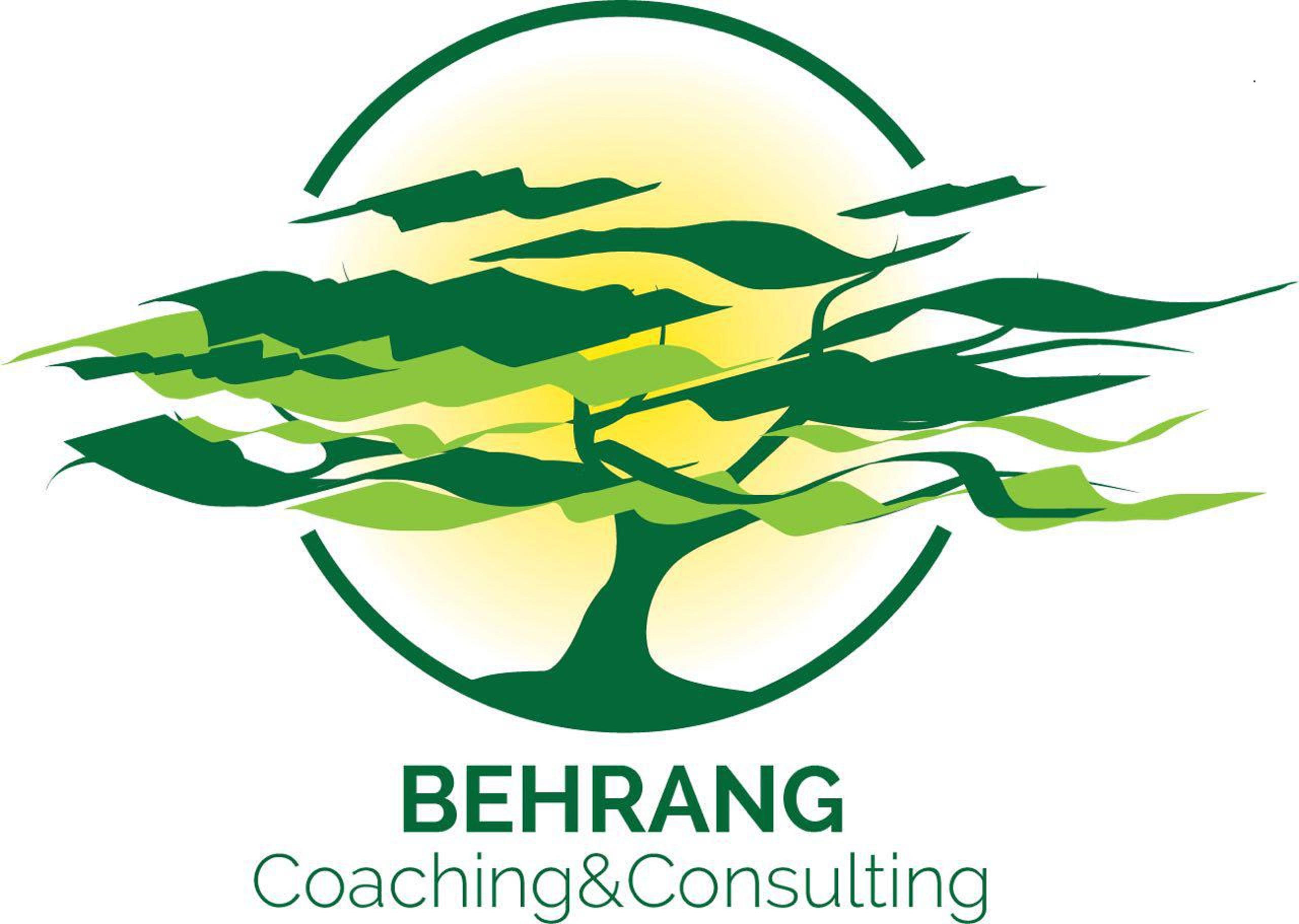 Behrang Coaching and Consulting
